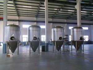 NEW STOCK BSV 30 BBL FERMENTER