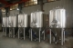 NEW STOCK BSV 20 BBL FERMENTER