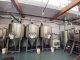 (3) Available - Used BSV 20 bbl Fermenters